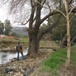 Paarl South Gravity Outfall Sewer: Application for Amendment of Environmental Authorisation